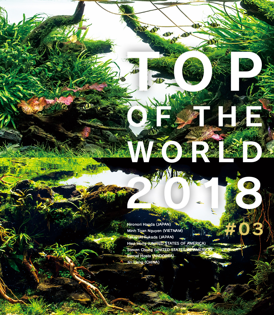 TOP OF THE WORLD 2018 #03
