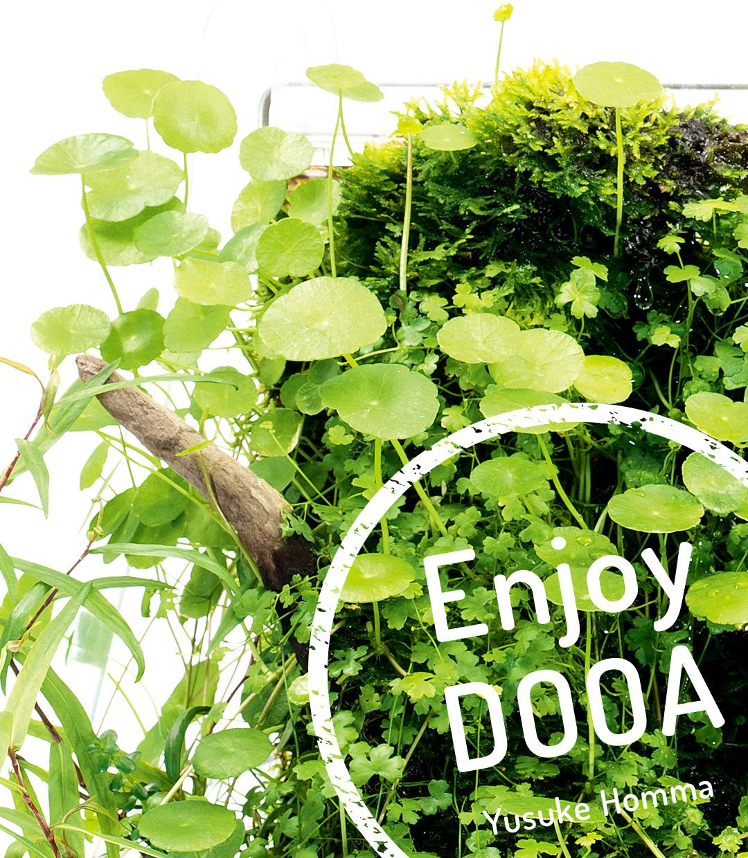 Enjoy DOOA: Simple beauty of nature  created with a WABI-KUSA WALL