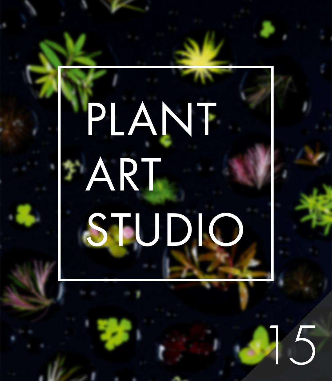 Plant Art Studio #15