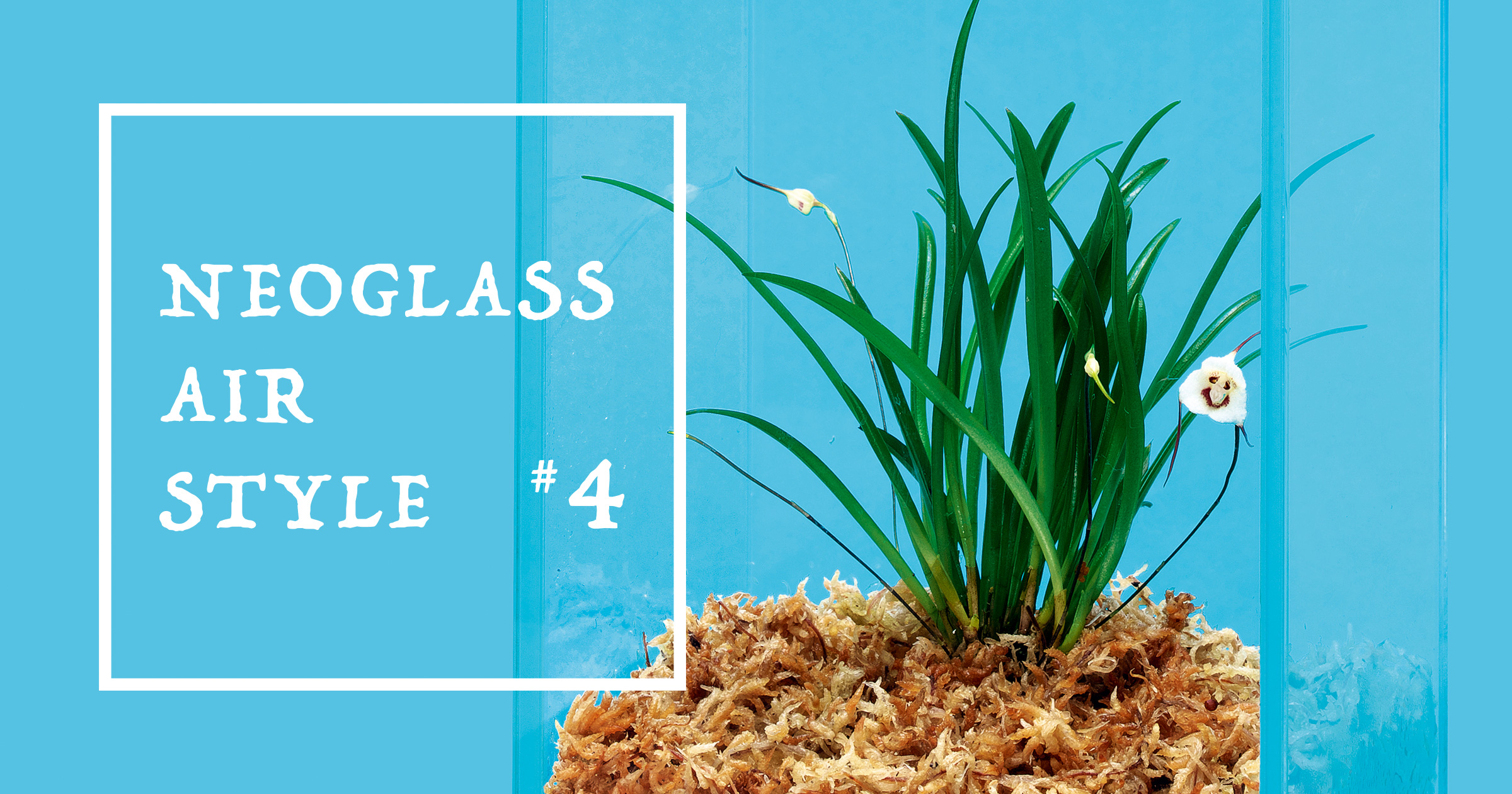 NEOGLASS AIR STYLE #4