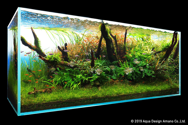 Nature In The Glass Balance Of Crimson Ada
