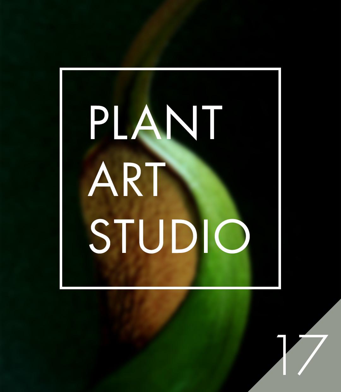Plant Art Studio #17