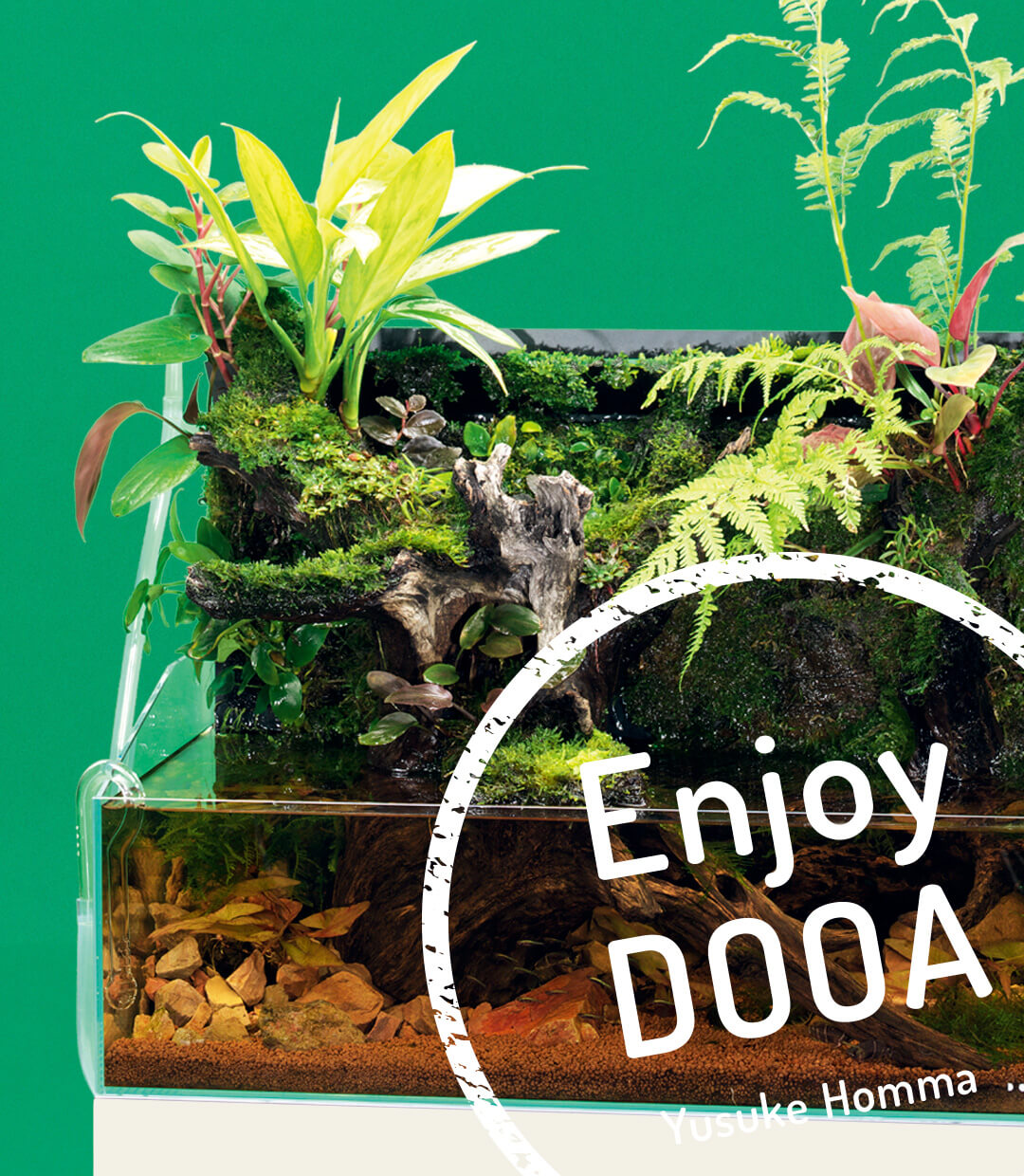 Enjoy DOOA: Expression of black water flowing through jungles with Mizukusa Wall 60