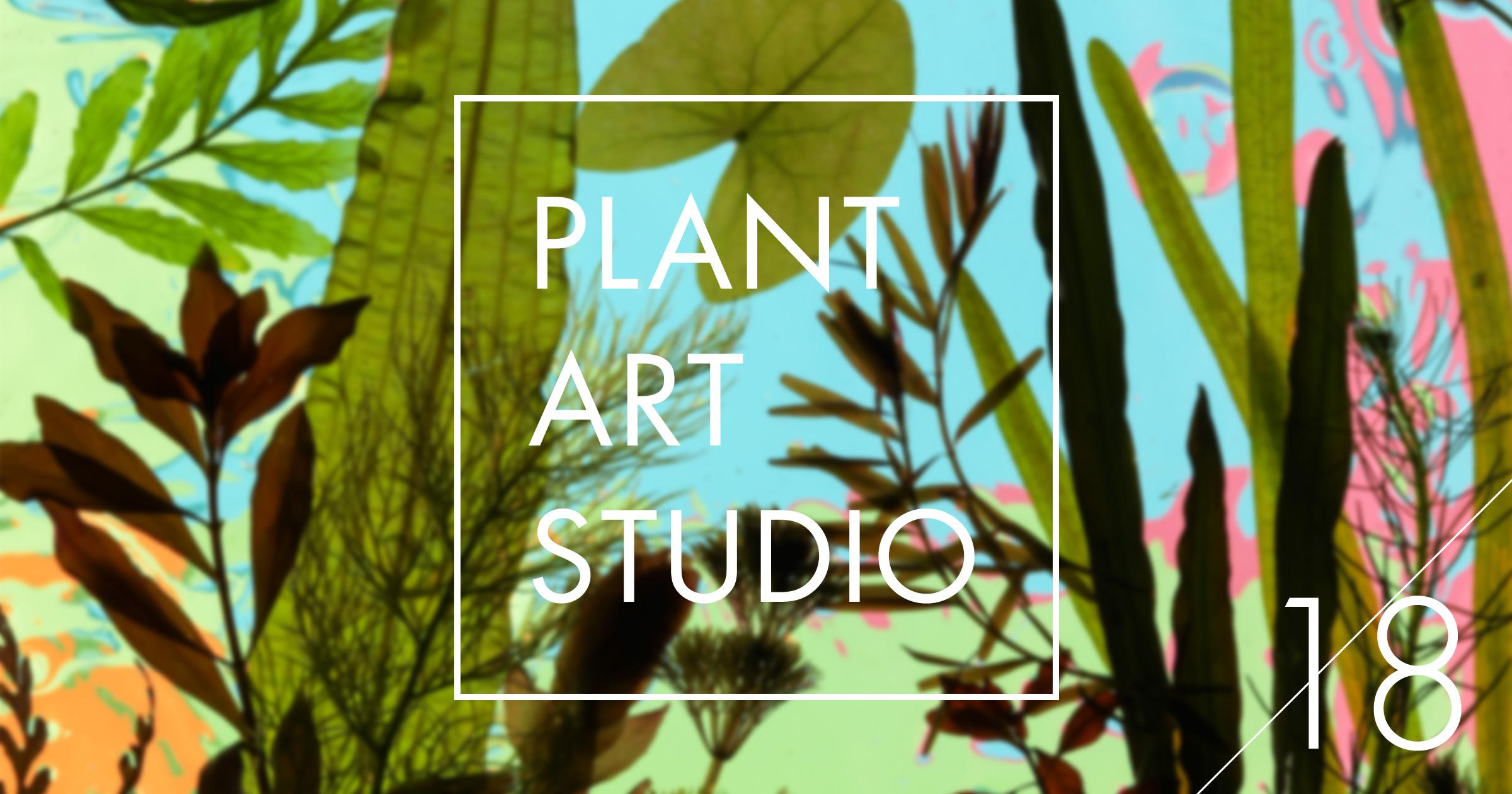 Plant Art Studio #18