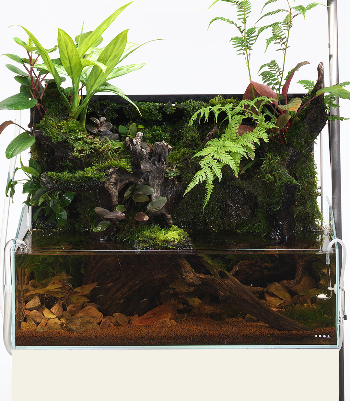 Brand new wall system for 60cm aquarium tank