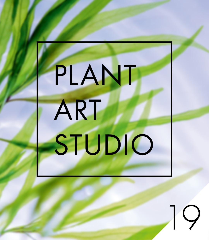Plant Art Studio #19