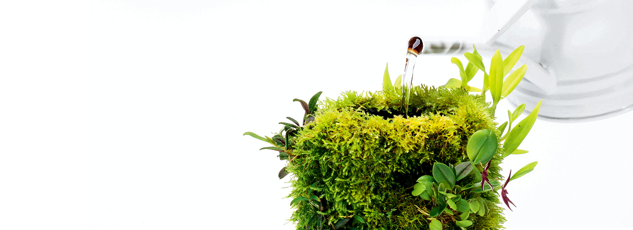 MAKE&KEEP 'TERRA BASE'
