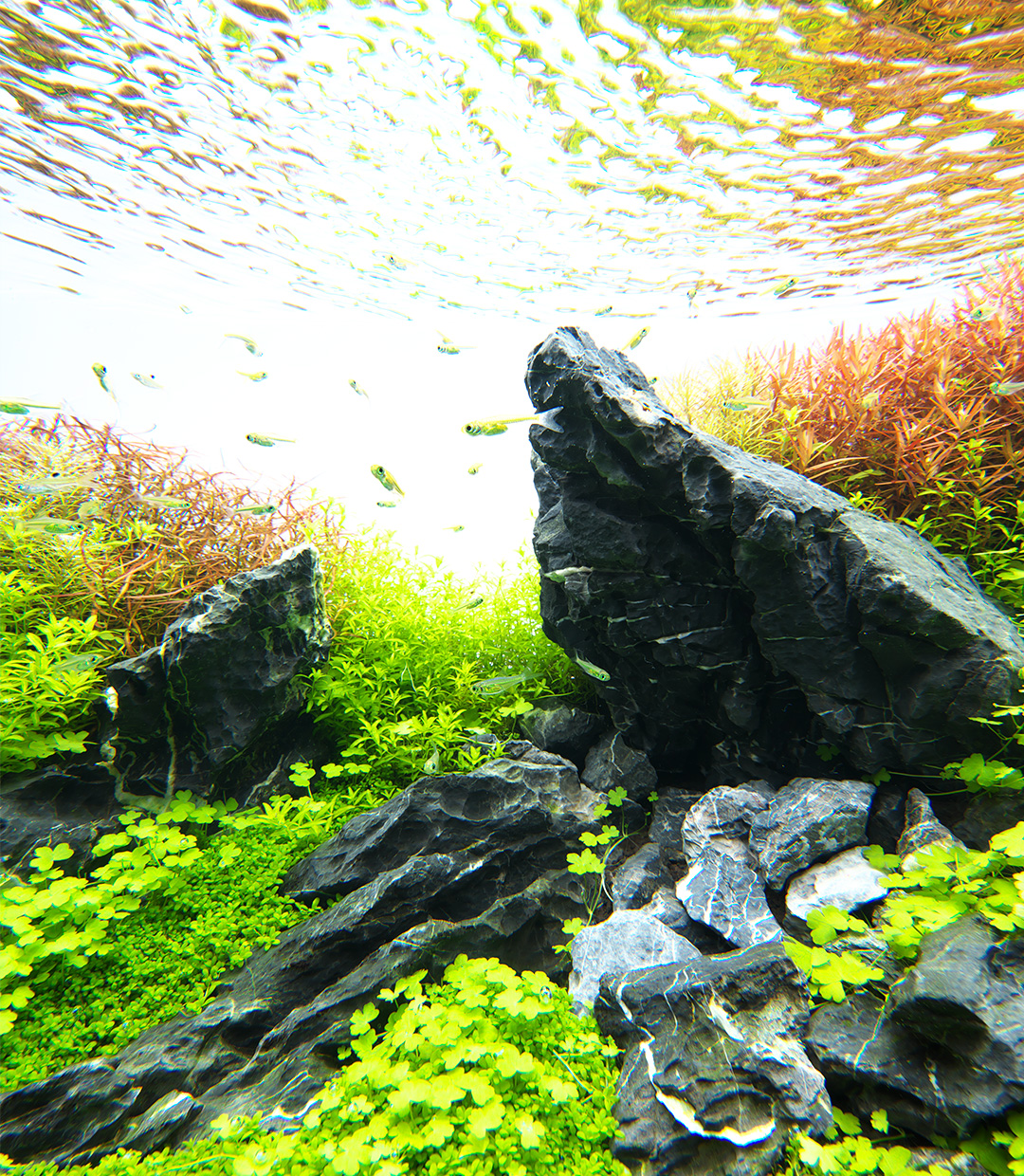 NATURE IN THE GLASS 'Gentle Scenery with Stones'