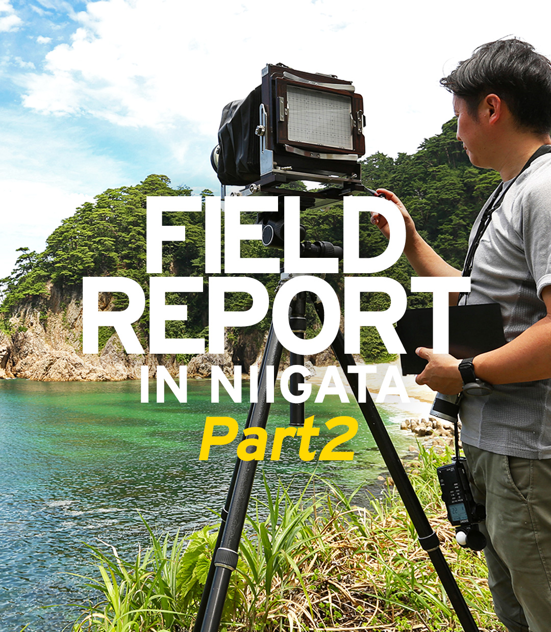 FIELD REPORT IN NIIGATA – Hints we learn from nature for Iwagumi – Part2