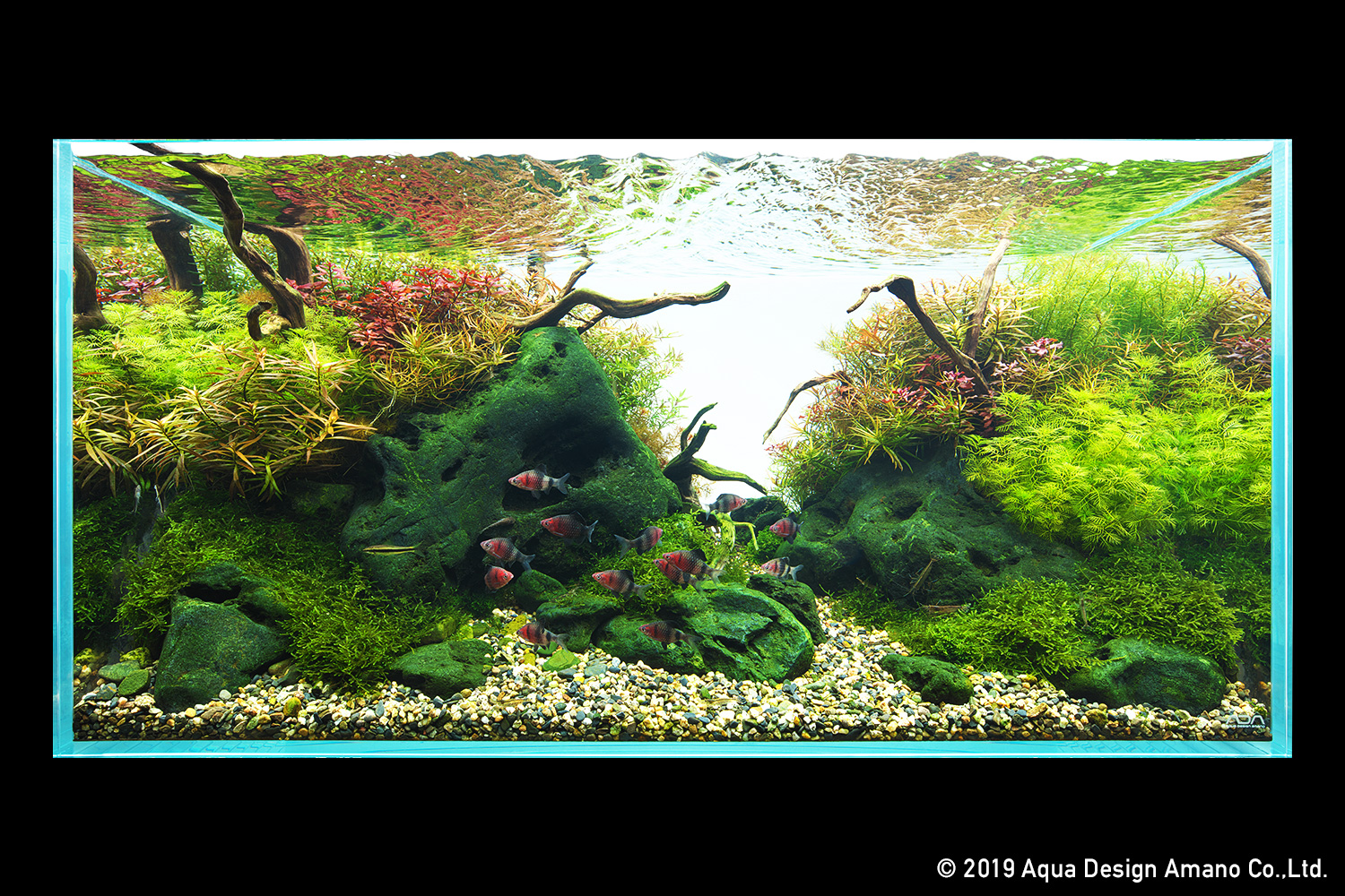 Nature In The Glass Autumn Foliage Underwater Fall In Japan Part 1 Ada