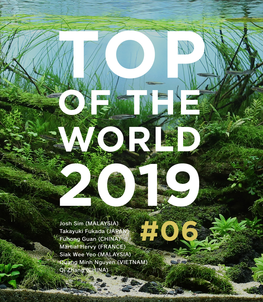 TOP OF THE WORLD 2019 #06