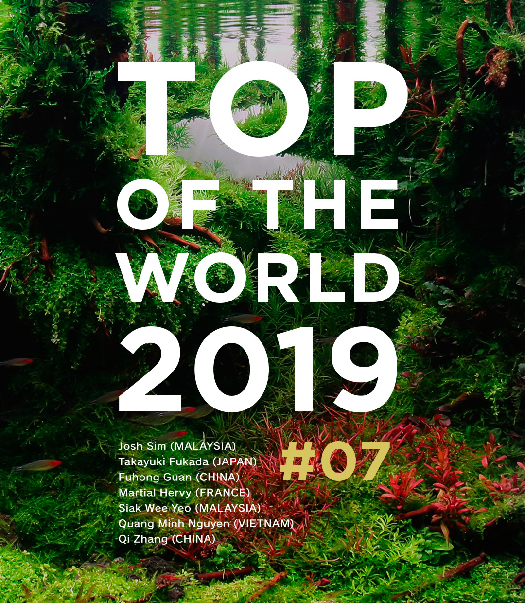 TOP OF THE WORLD 2019 #07