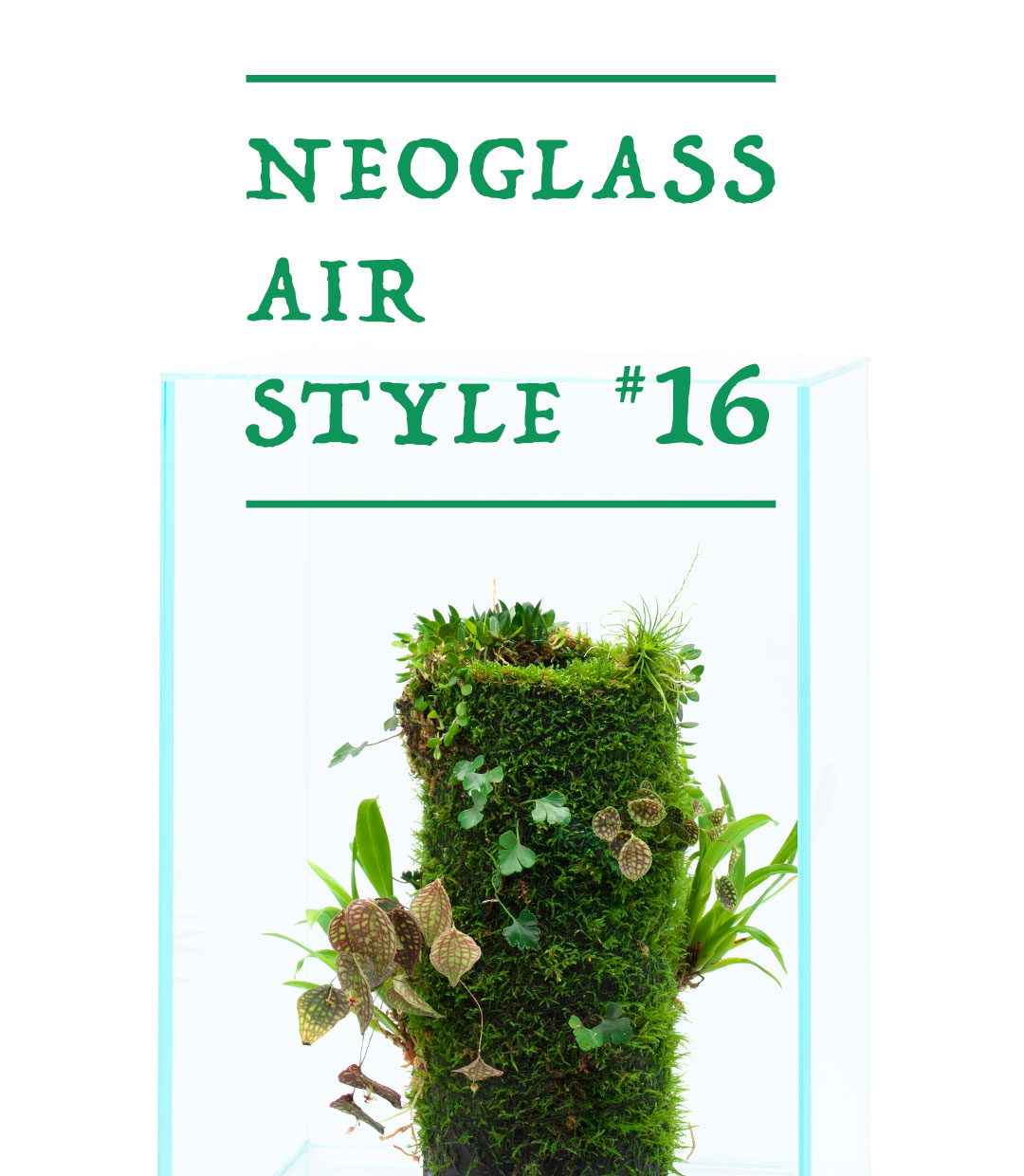 NEO GLASS AIR STYLE 'Longing For the Natural Habitat'