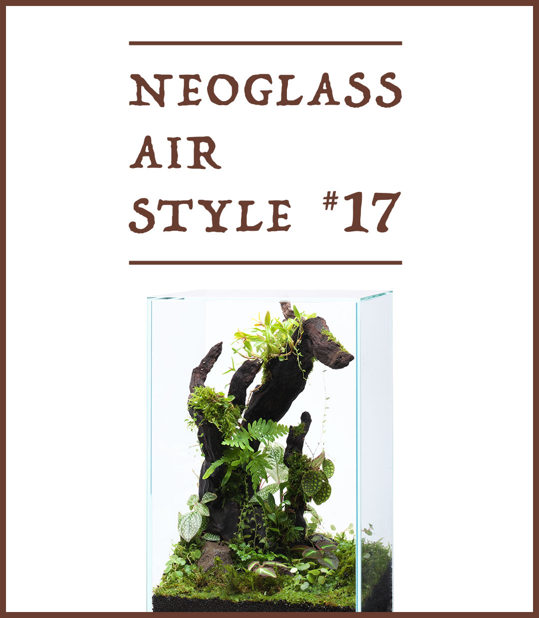 NEO GLASS AIR STYLE 'Enjoy the uplifting energy created by jungle plants'