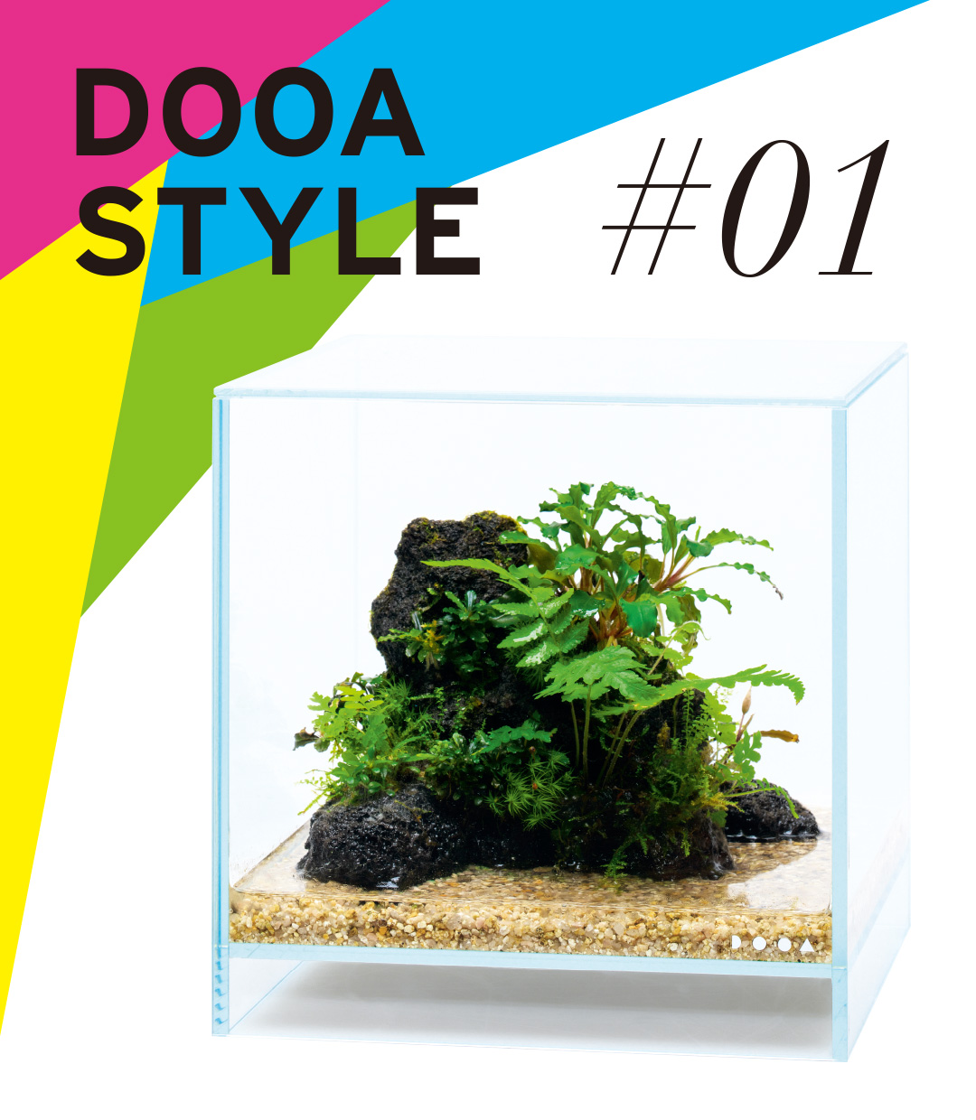 DOOA STYLE #1  Having an open feeling, even inside a tank