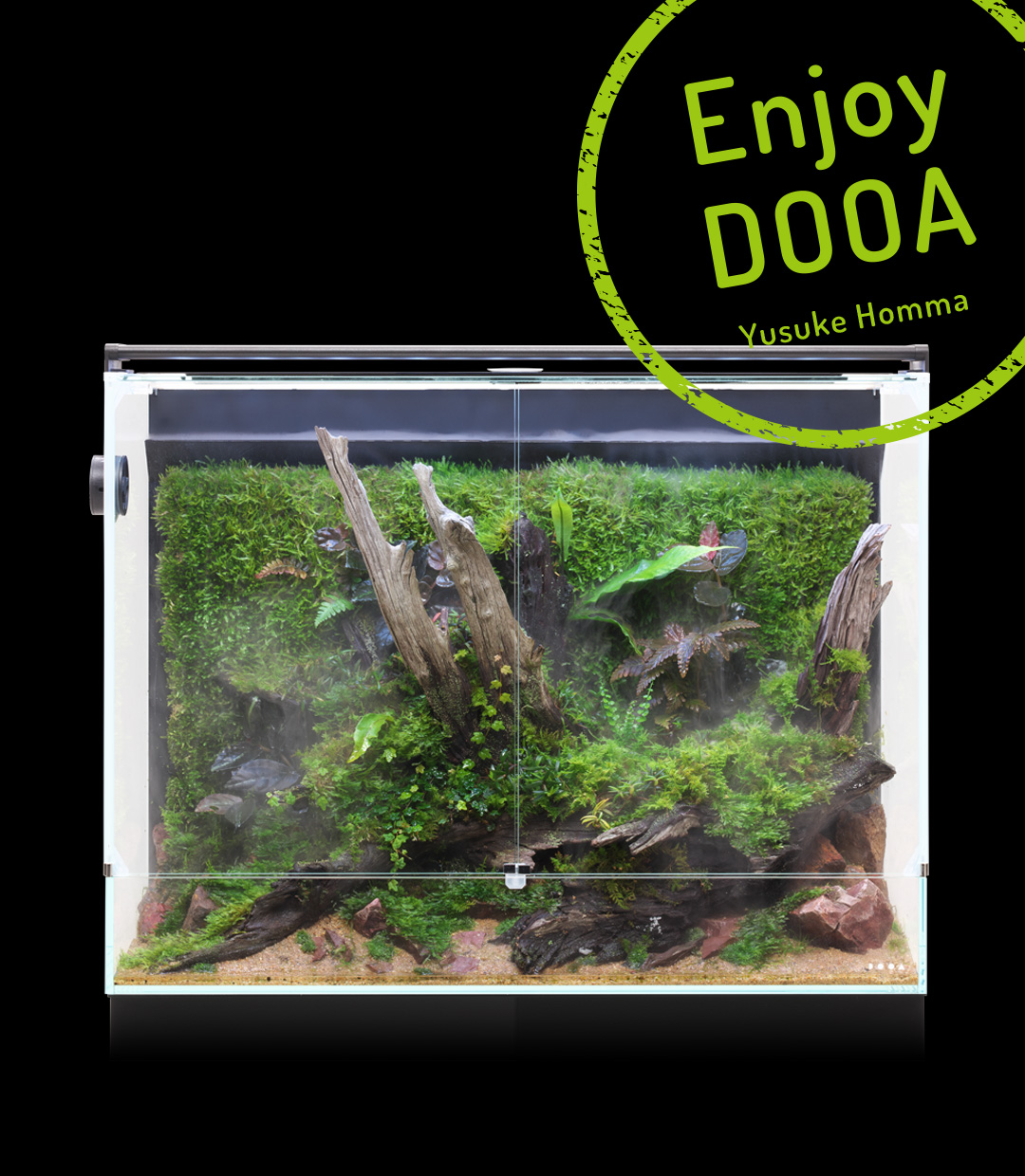 Enjoy DOOA 'Soothing Paludarium expressing Wabi-Sabi with old driftwood and moss'