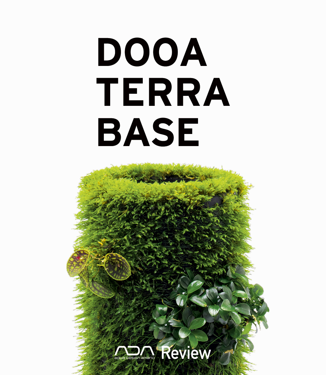 DOOA TERRA BASE 'Enjoy the natural appearance of plants with a sense of eternity created by moss'