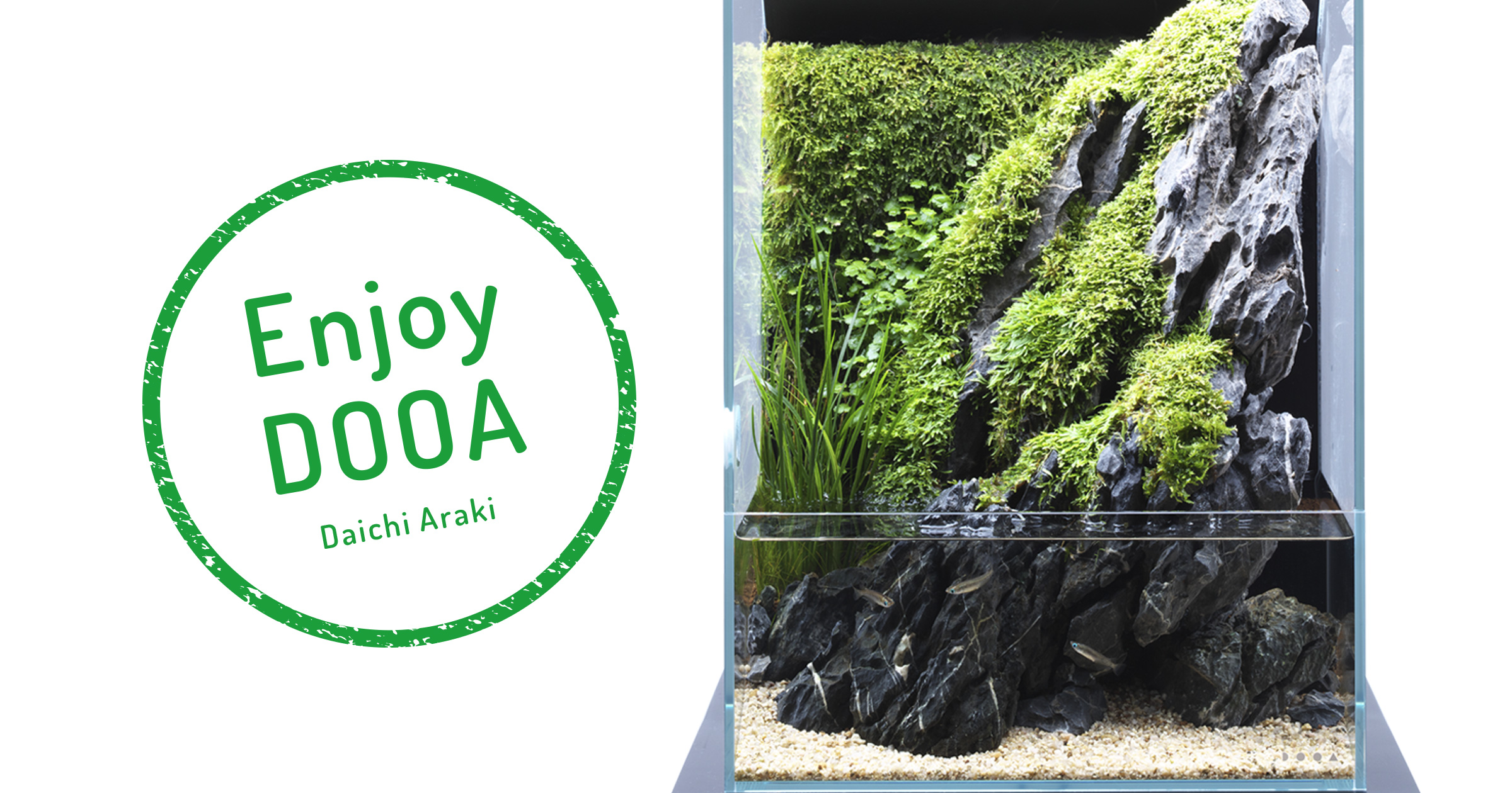 Enjoy DOOA 'Aqua Terrarium feeling cool from the combination of greenery and stones'