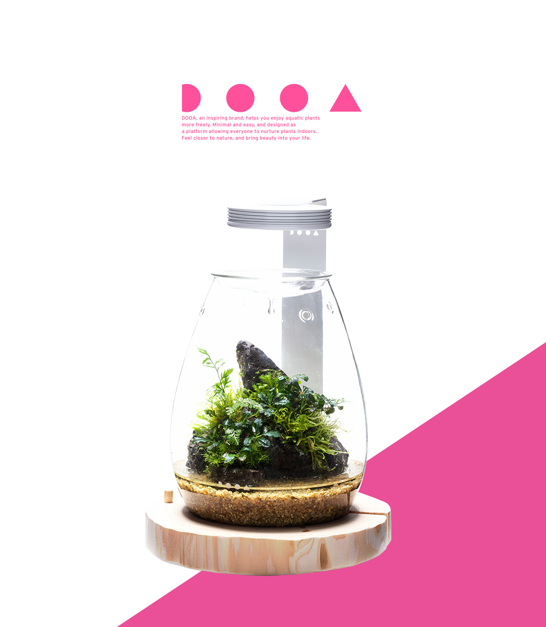 DOOA GLASS POT SHIZUKU 'Bring the Healing Power of Forest into A New Shape'