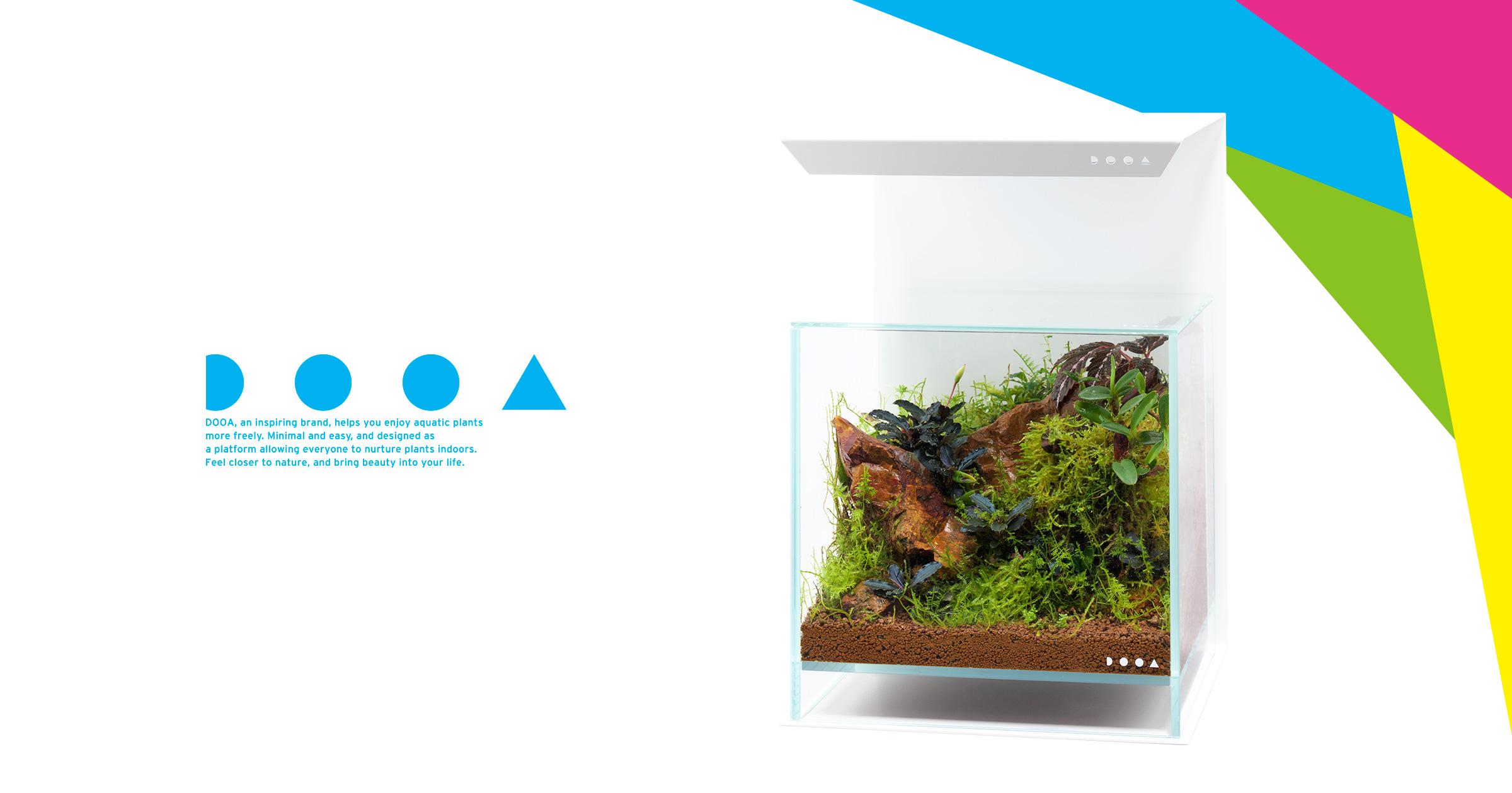 DOOA PALUDARIUM 'Imagine the Natural Habitat of Tropical Plants'