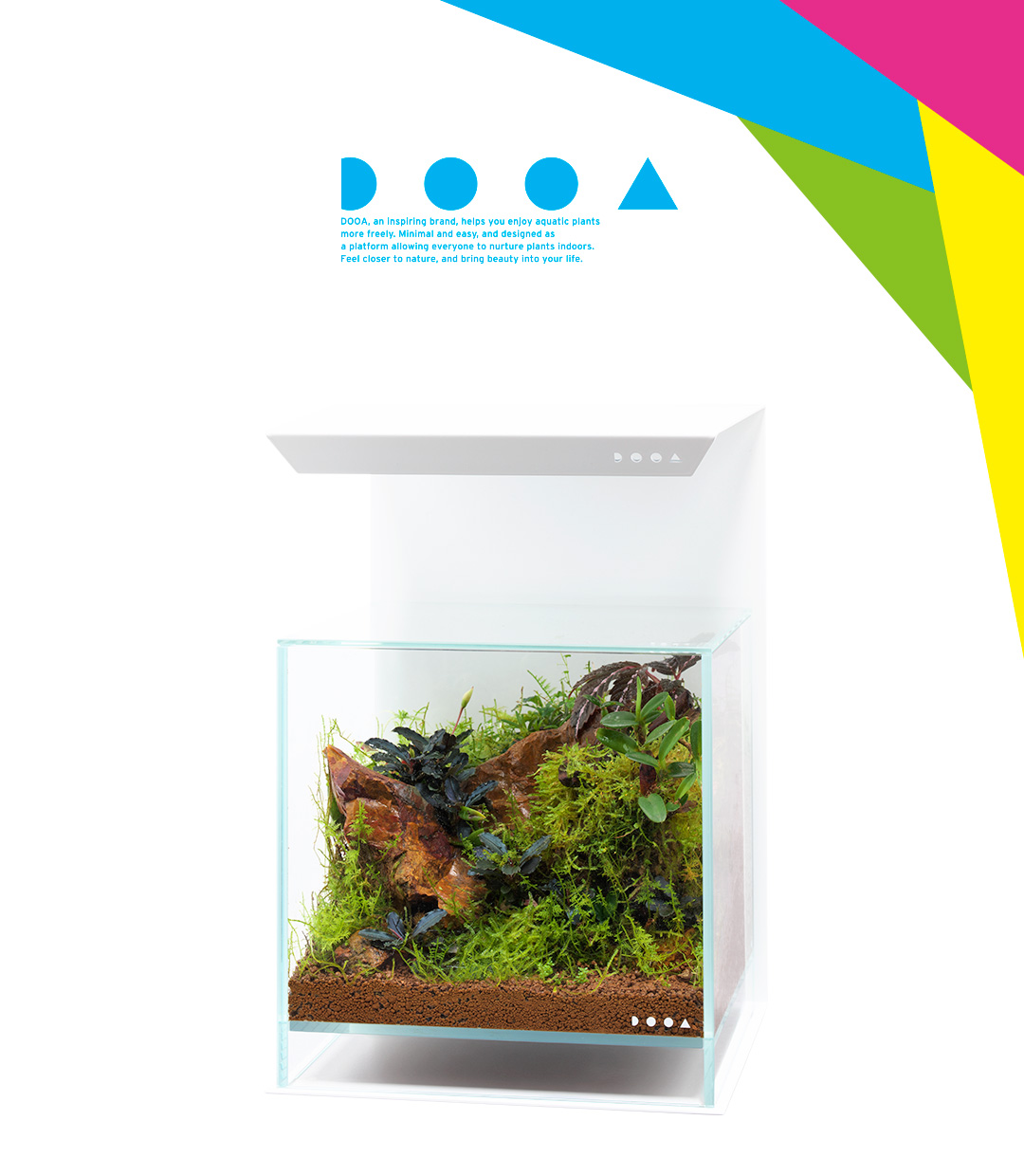 DOOA PALUDARIUM 'Imagine the Natural Habitat of Tropical Plants'