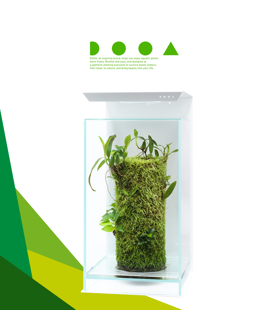 DOOA TERRA BASE 'Charms of Epiphytic Plants that Grow on Moss-covered Trees'