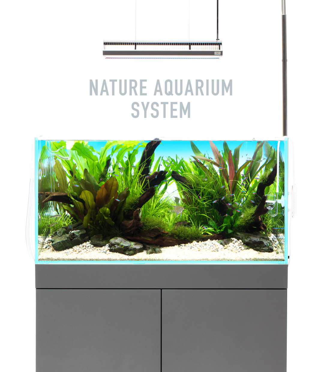 NA SYSTEM 'To Maximize the Beauty of Aquascapes'