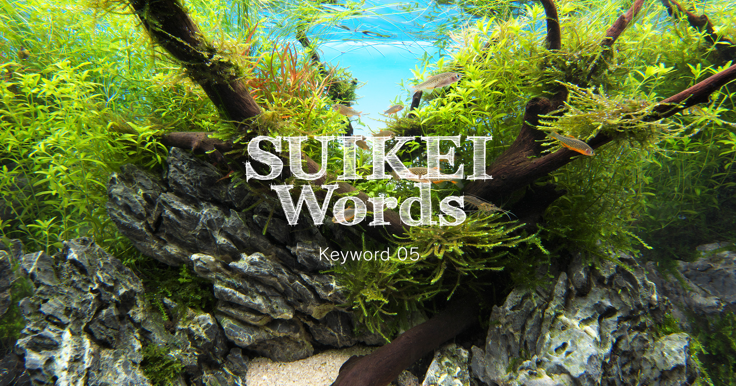 SUIKEI WORDS Keyword 05 'Techniques to make small layouts look bigger'