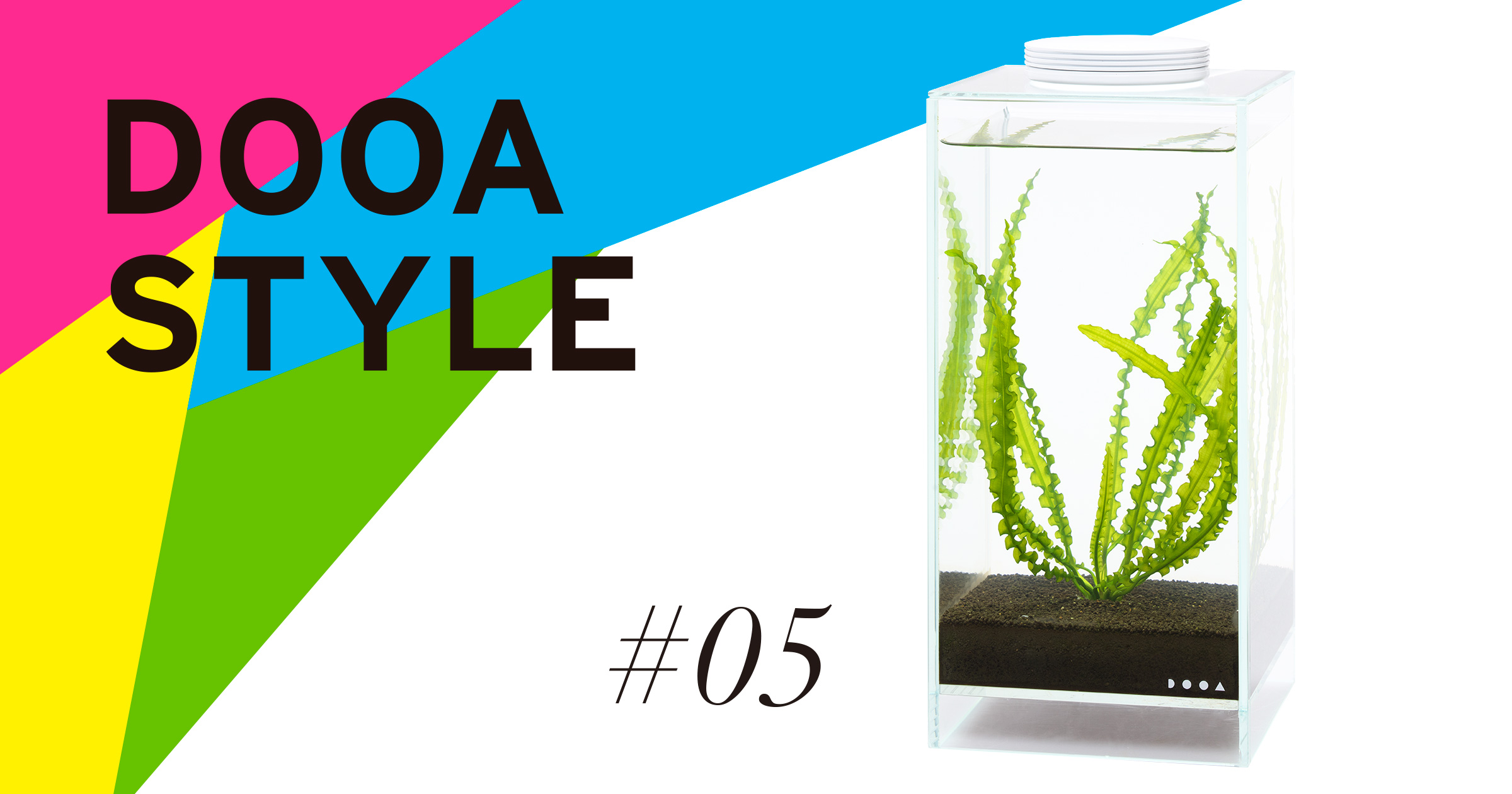 DOOA STYLE #5 'An aquatic plant with fluted leaves, native to Africa'