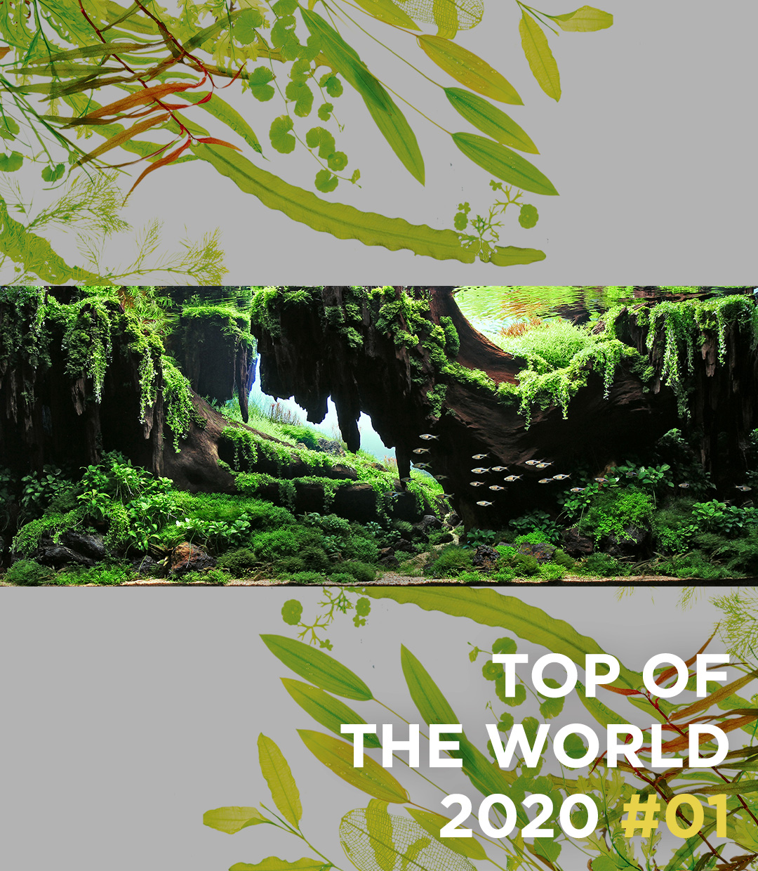 TOP OF THE WORLD 2020 #01 Siak Wee Yeo