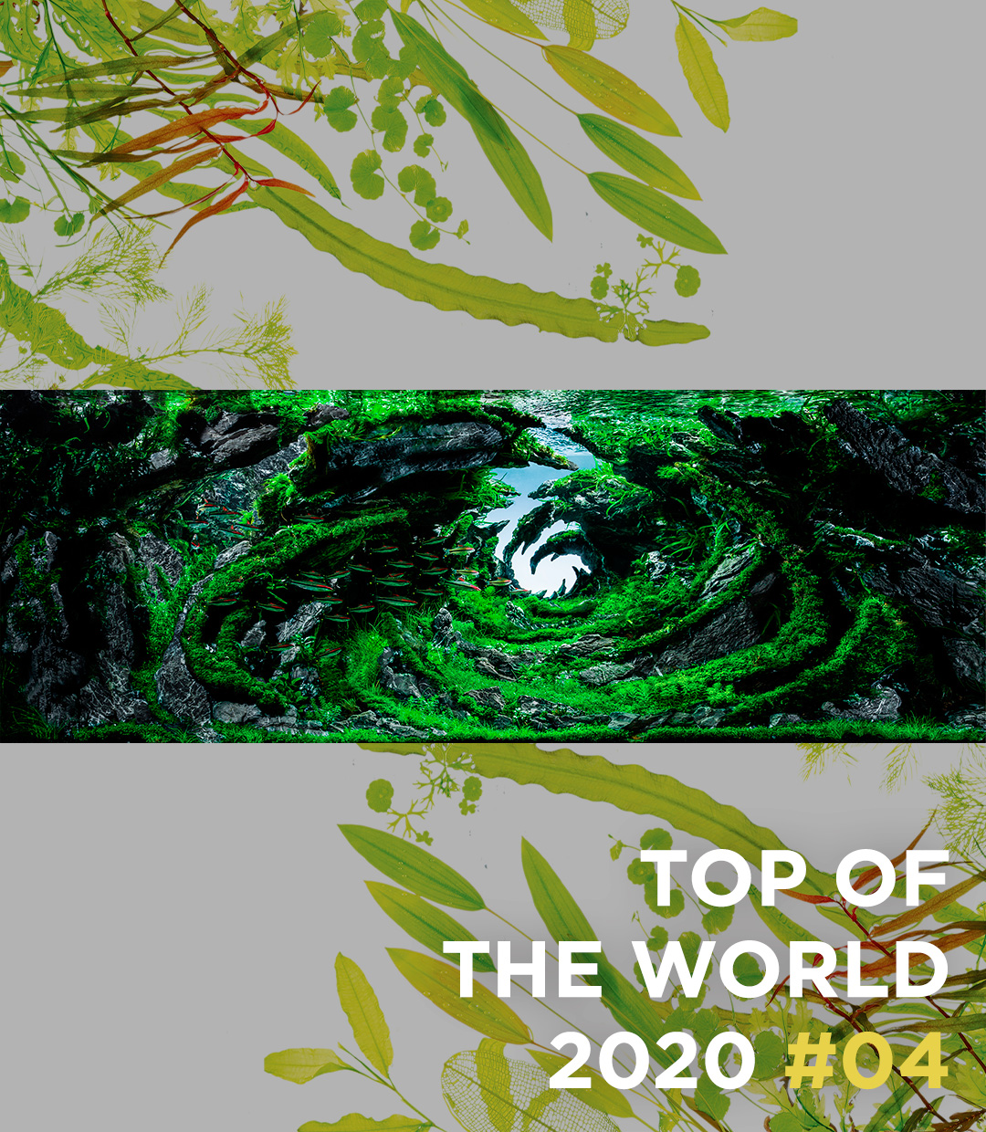 TOP OF THE WORLD 2020 #04 Albert Escrihuela Cáceres