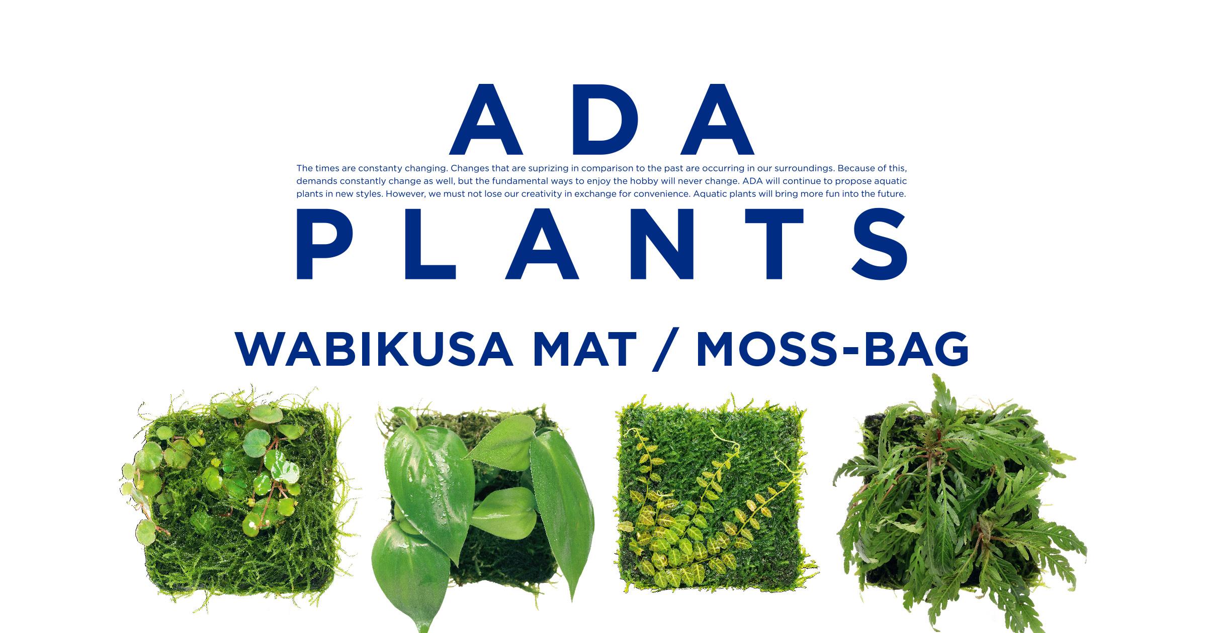 ADA PLANTS 'Wabi-Kusa Mat & Moss Bag'