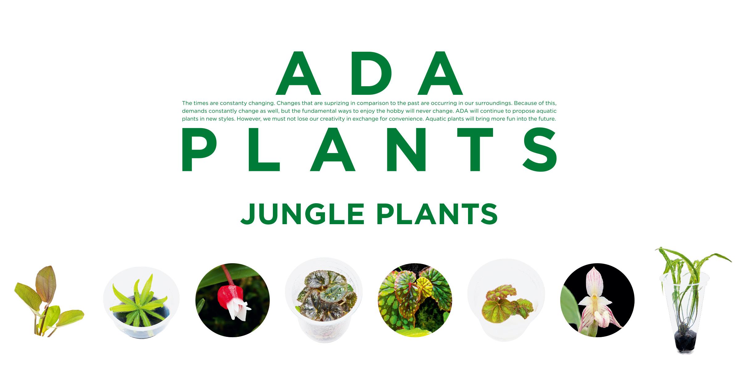 ADA PLANTS 'Jungle Plants'