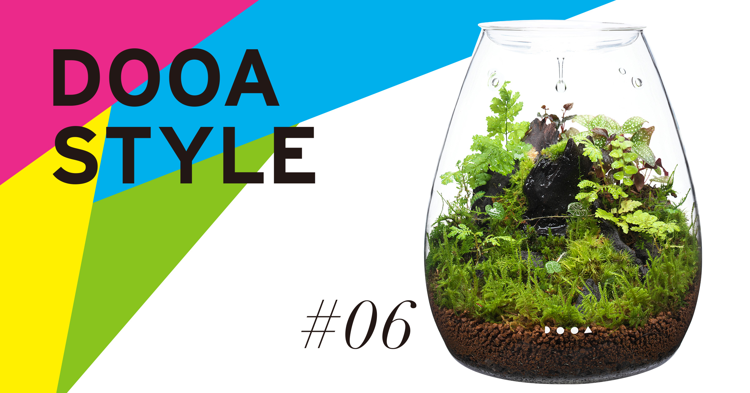 DOOA STYLE #6  'The needs of tiny living things growing in a small space'