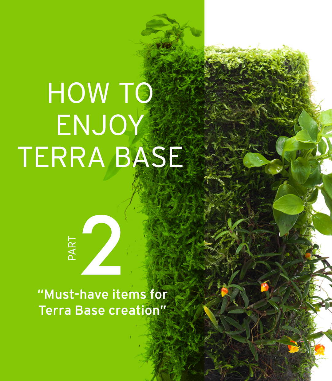 "HOW TO ENJOY TERRA BASE ""Must-have items for Terra Base creation"""