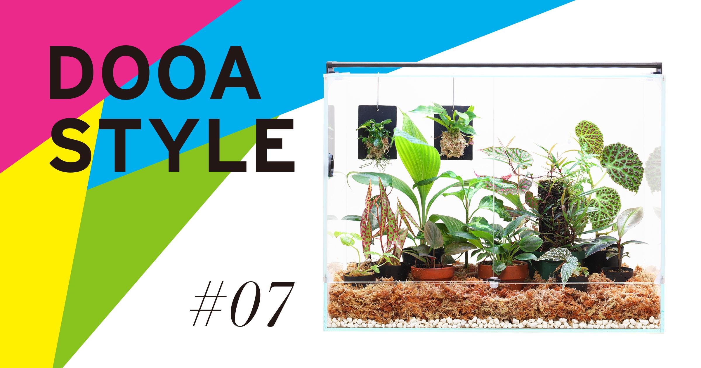 DOOA STYLE #7 'A living room for Jungle Plants'