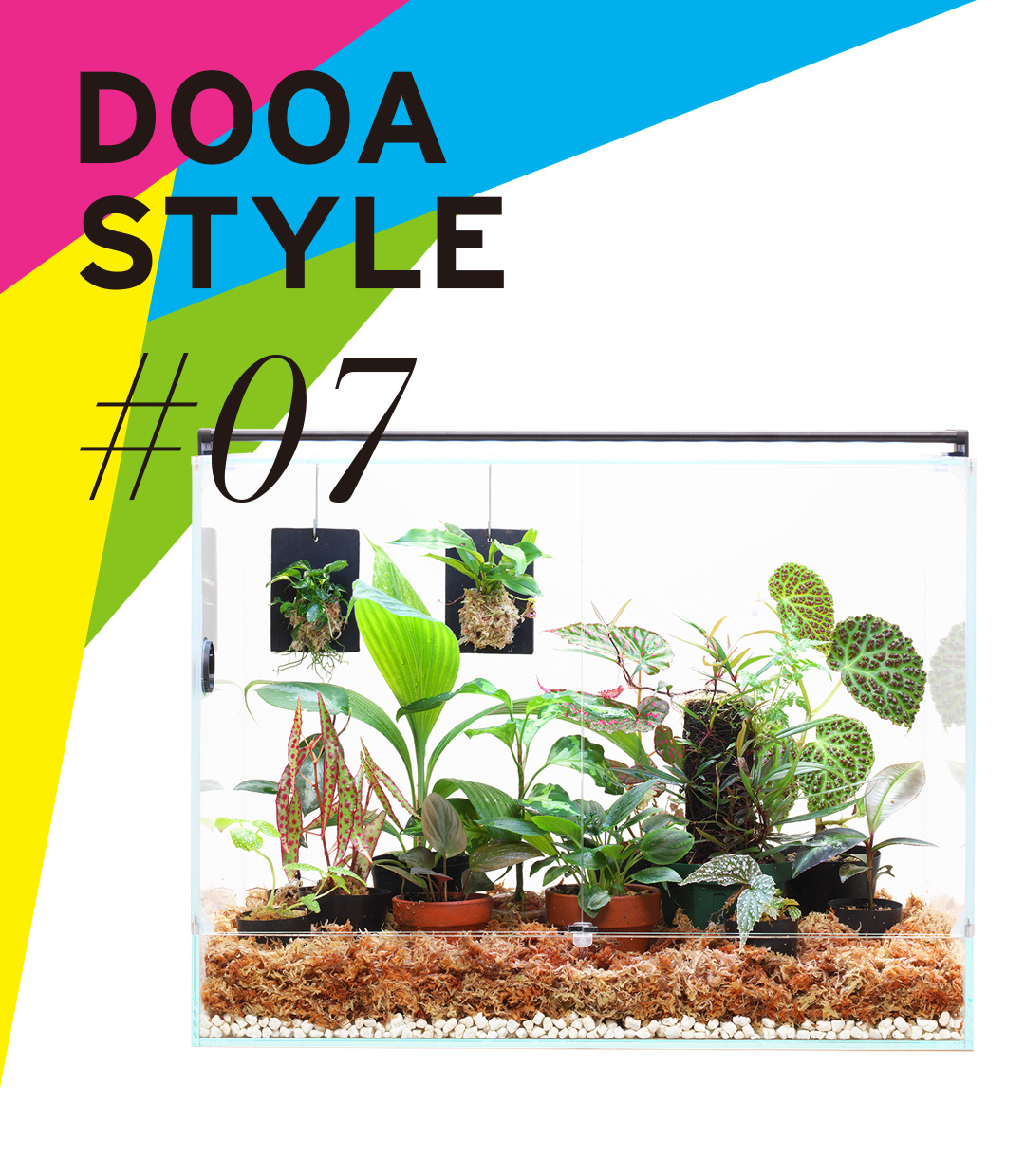 DOOA STYLE #7 'A living room for Jungle Plants'