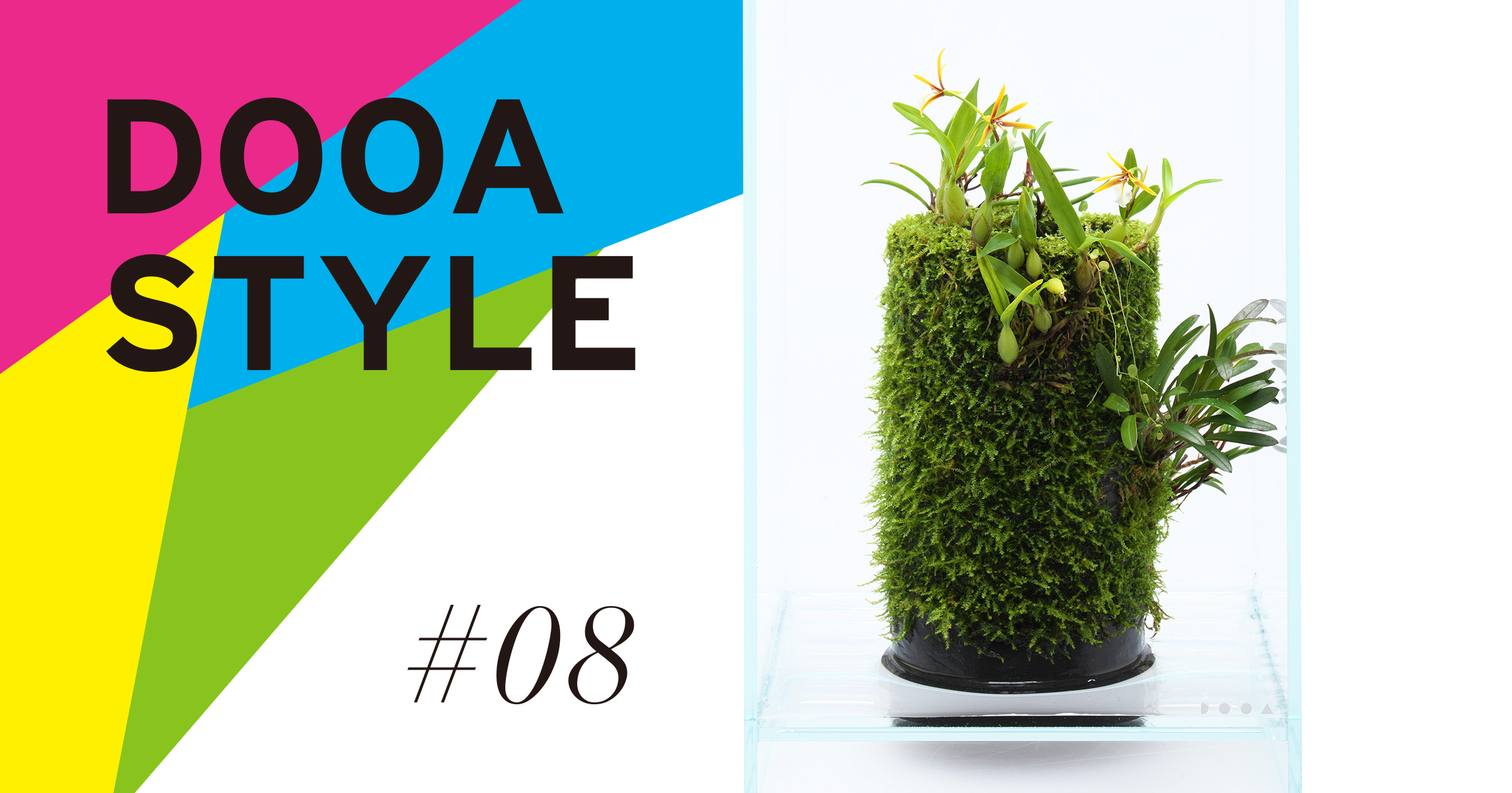 DOOA STYLE #8 'Immersing in the time of nature'