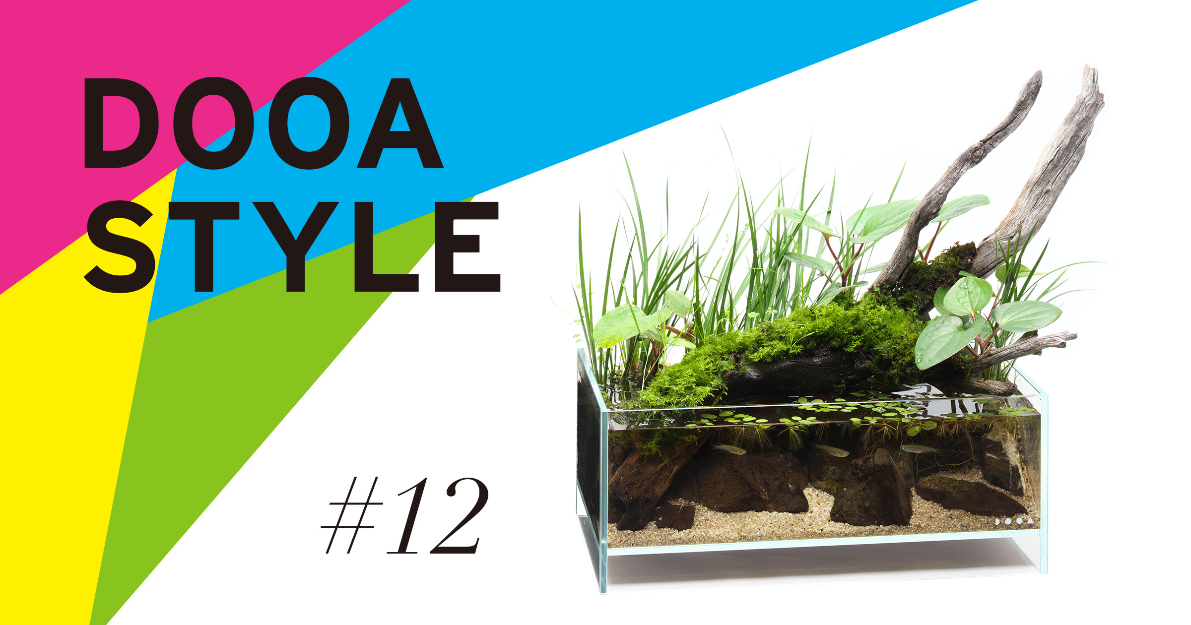 DOOA STYLE #12  Original scenery in early summer that cuddles up to driftwood