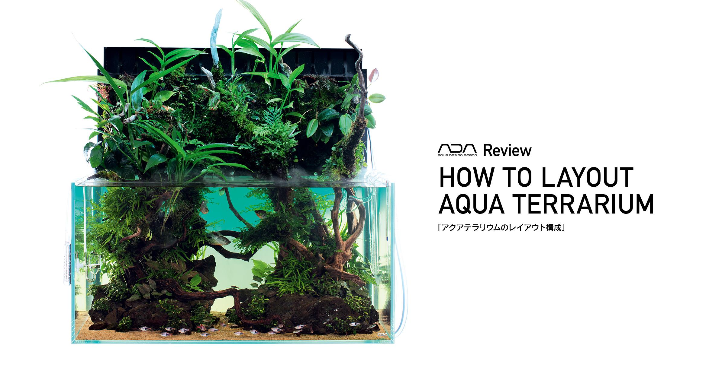 """ADA Review """"Layout Composition of Aqua Terrarium"""""""